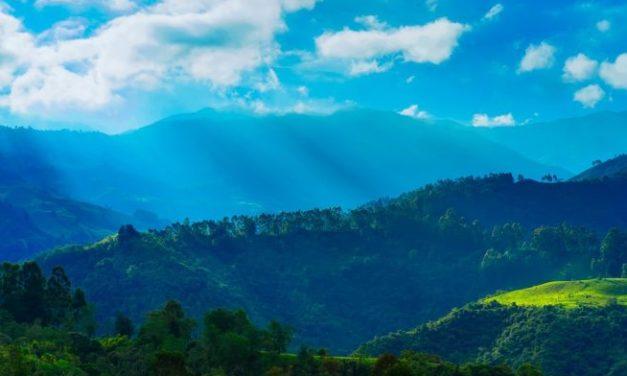 """""""Paz"""" de Caryl Férey : Colombie, l'impossible paix ?"""